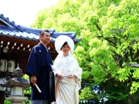 森川さま、石井さま H26.5.18[挙式]向日神社